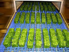 EASYCUBE cubes on conveyor -  frozen spinach herbs vegetables